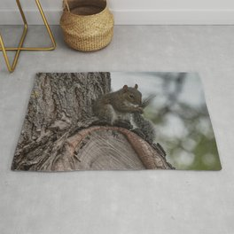 Squirrel Tail Rug