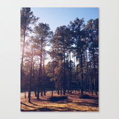 Spring Hope, North Carolina Canvas Print