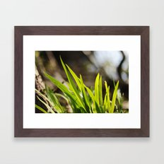 The Green Green Grass Framed Art Print