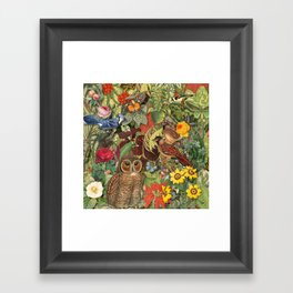 birds flowers and insects Framed Art Print