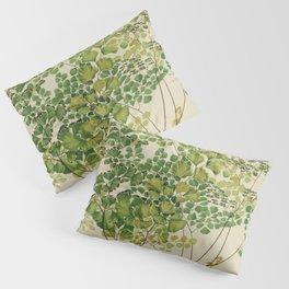 Maidenhair Ferns Pillow Sham