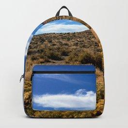 High Desert 1 Backpack