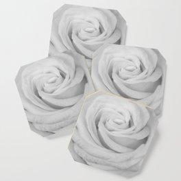 Single white rose close up Coaster