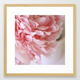 Peony Pink Framed Art Print