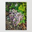 September Flowers by amysturg