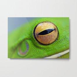 Frog Eye Metal Print