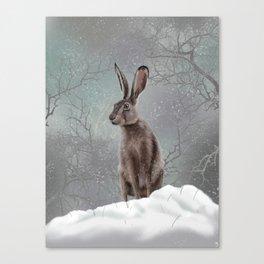 Winter Hare Canvas Print