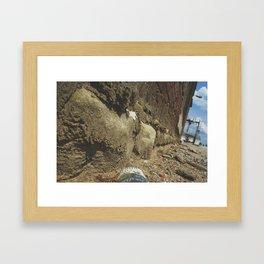 Ants View  Framed Art Print