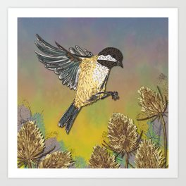 Coal Tit and Teasels Art Print