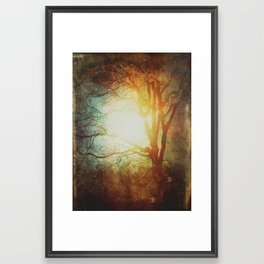 Morning Bliss Framed Art Print