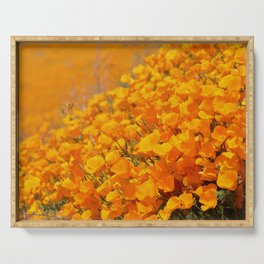 Golden Meadow of California Poppies in Bloom by Reay of Light Photography Serving Tray