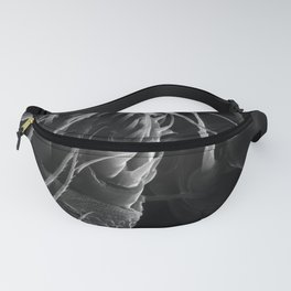 Spinnerets Fanny Pack