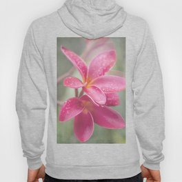 The Temple Tree Hoody