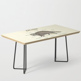 Anatomy of a Raccoon Coffee Table