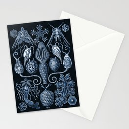 Ernst Haeckel Amphoridea Sea Life Stationery Cards