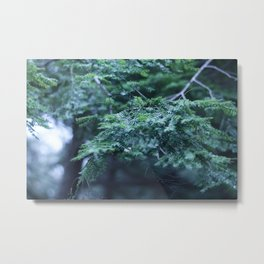 forever green Metal Print