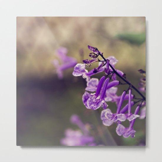 Mona Lavender Metal Print