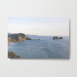A Lovely Pacific Northwest View Metal Print