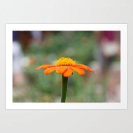 Orange Cone Art Print