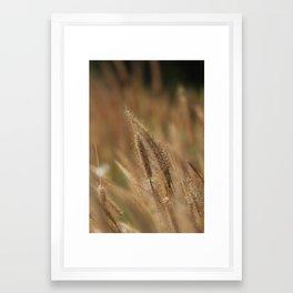 I love Grass. Framed Art Print