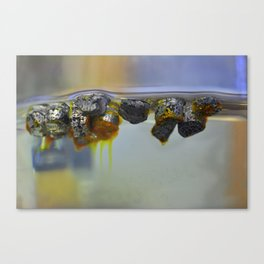 The reaction of triphenylphosphine with lithium. Canvas Print