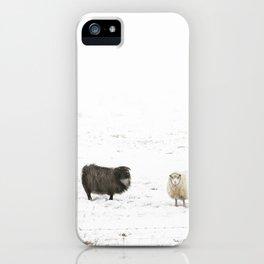 Icelandic Sheep III iPhone Case