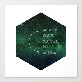 We are the universe Canvas Print