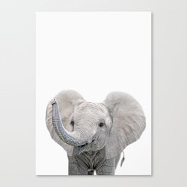 Elephant Calf Art Canvas Print