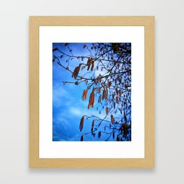 Spring. Remember that? Framed Art Print