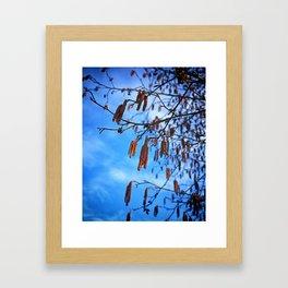 Spring. Remember that? Framed Art Print
