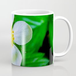 Wild Strawberry Blossom Coffee Mug