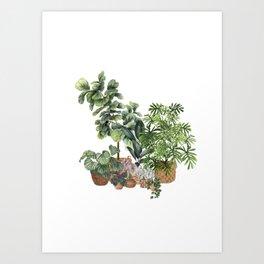 House Plants Watercolor Illustration 6 Art Print