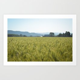 Country Fields Art Print