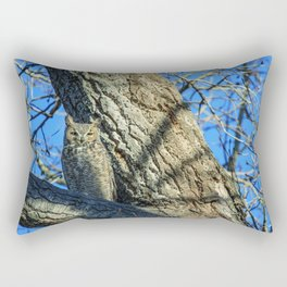 A great horned owl has asserted permanent visiting rights to a tree above the ranch headquarters at Rectangular Pillow