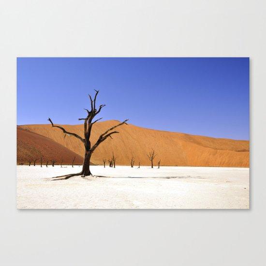 desert tree 4 Canvas Print