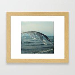 Ocean Feather Framed Art Print