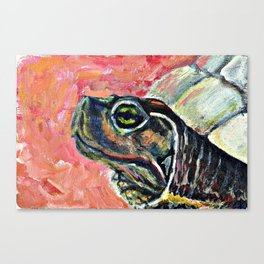 Abstract turtle painting Canvas Print
