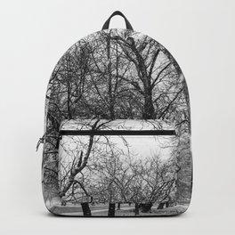 Winter jog Backpack