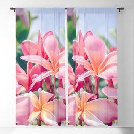 Aloha Blackout Curtain