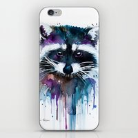 raccoon iPhone & iPod Skins featuring Raccoon by Slaveika Aladjova