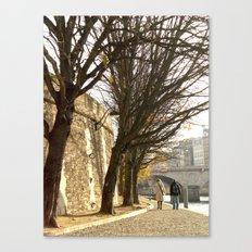Seine 2 Canvas Print