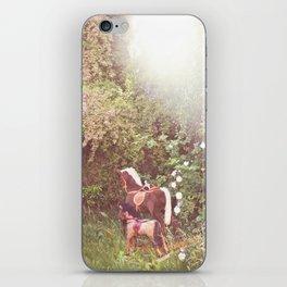 Three little rocking horses iPhone Skin