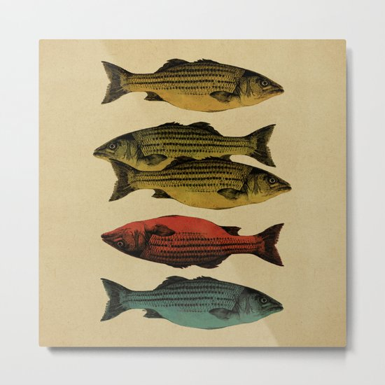 One fish Two fish... Metal Print