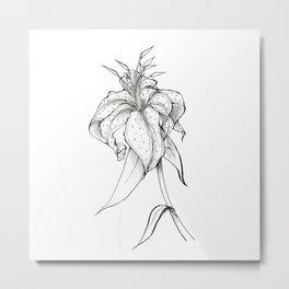 Lilie Metal Print