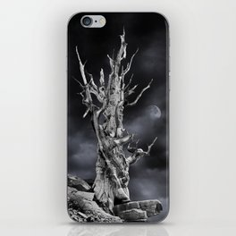 The ghost of Pinus longaeva 2. iPhone Skin