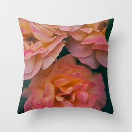 Point defiance rose garden on a rainy day Throw Pillow