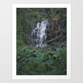 Queens Bath Waterfall Art Print