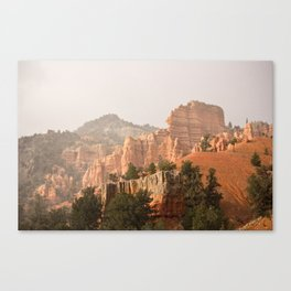 Dixie; Land of many uses  Canvas Print