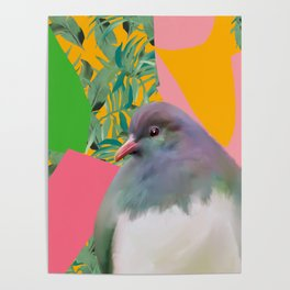 Kereru with Plants on Pink Poster