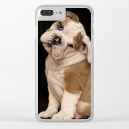 Bulldog Puppy Clear iPhone Case
